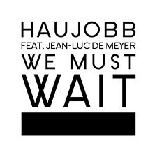 "HAUJOBB We must wait (feat. jean-luc de meyer) 7"" VINYL 2014 FRONT 242"