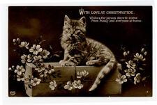 c 1912 Cute Little TABBY CAT British vintage photo postcard