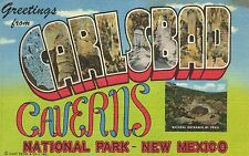 """Large Letter Postcard,""""Greetings From Carlsbad Caverns,New Mexico"""",Used,1955"""