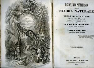 Dizionario pittoresco della storia naturale e delle manifatture