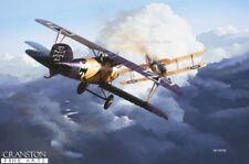 WW1 AVIAZIONE ART POST CARD TEDESCO ALBATROSS D-III BRISTOL FIGHTER FRONTE OCCIDENTALE