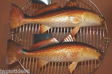 (2)pcs, REALISTIC REDFISH REPLICA, FISHERMAN GIFT, REDFISH MOUNT, GAME FISH #28