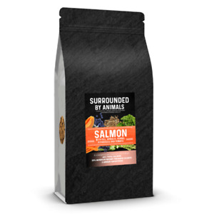Superfood 65 Dry Dog Food Scottish Salmon High Protein Complete Kibble