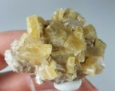 Cute Golden Baryte / Barite Crystal Cluster from Oregon