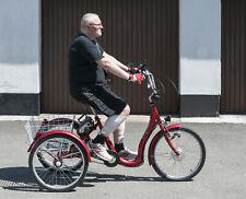 Trójkołowy rower elektryczny Schachner