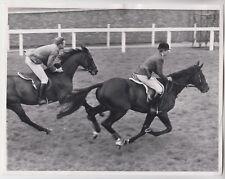 1969 PRESS PHOTO - royalty, Princess Anne riding horse on Ascot racecourse