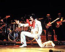 """Elvis Presley 10"""" x 8"""" Photograph no 52"""