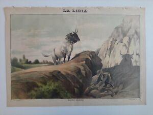 1893 La Lidia Revista Taurina Año XII Número 26 Litografía Toros Corrida