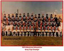 Cfl 1974 Grey Cup Champs Montreal Alouettes Team Photo 8 X 10 Photo Free Ship