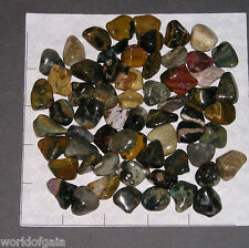 OCEAN JASPER, small tumbled, 1/2 lb bulk stones Orbicular 60-70 pkg