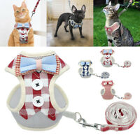 Breathable Small Medium Dog Harness & Leash set Bowknot Puppy Cat Mesh Walk Vest