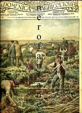 GALLARATE-La domenica dell'agricoltore- 1928-Redenzione della Brughiera