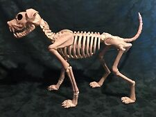 Crazy Bonez Skeleton Dog - Great Christmas Gift For Halloween Lovers