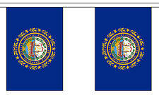 NEW HAMPSHIRE U.S. STATE BUNTING 9 metres 30 flags Polyester flag