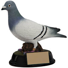 SOLID RESIN ELITE PIGEON RACER RACING TROPHY AWARD RF4157A AWARDBOARD