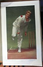 """SHANE WARNE, """"AROUND THE WICKET"""" by d'Arcy Doyle. HAND SIGNED LTD EDITION PRINT"""
