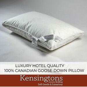 Kensingtons Pure Canadian White Snow Goose Down Goose Feather Pillow 100% Cotton