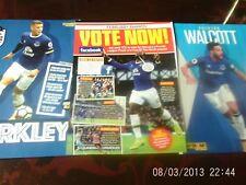 everton barkley & lukaku & walcott  A4 colour football pictures