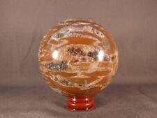 Madagascan Quartz Included Petrified Podocarpus Wood Sphere - 58mm, 388g