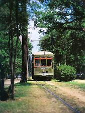 New Orleans Streetcar by Chip Quaglino 11 x 14