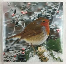 CHRISTMAS CARDS - Winter Robin - Charity - Dougie Mac - Pack of 10 Cards