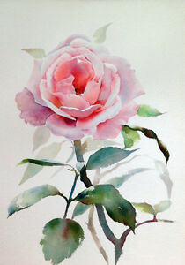 Botanical Rose Pink Watercolor Flowers Shabby Chic Provincial Canvas Print A4