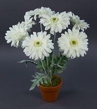Gerbera 45cm Weiß Im Topf LM Kunstpflanzen Künstliche Pflanzen Kunstblumen