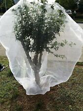 """Agfabric Plant Cover In-shape Bag w/ Rope Insect Barrier Insect Netting 72""""x 72"""""""