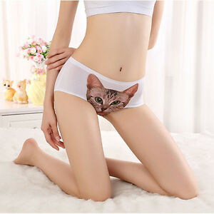 3X Ladies Kitten Pussy Cat Panties Knickers Brief Invisible Mix Colour 861