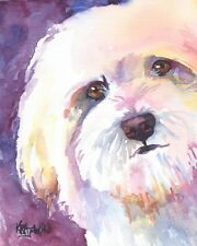 Havanese Dog Art Print Signed by Artist Ron Krajewski Painting 8x10