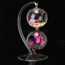 Home Decor Hanging Ball Glass Terrarium Vase Flower Planter Hydroponic Container