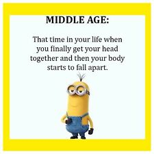 "4""x4"" Flexible Fridge Magnet Funny Minion Meme Middle Age"