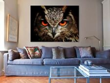 Beautiful Birds High Quality Framed Ready to Hang wall Canvas choose your size