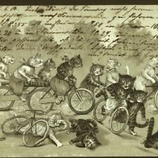 LOUIS WAIN..CATS WILD SPORT BICYCLE RACING,ACCIDENT,1904 UNDIVIDED BACK POSTCARD