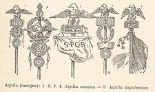 A7930 Aquila romana e napoleonica - Xilografia - Stampa Antica 1924 - Engraving