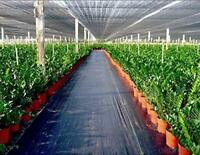 Agfabric 4x50ft Woven Weed Barrier for Soil Erosion Control and UV stabilized