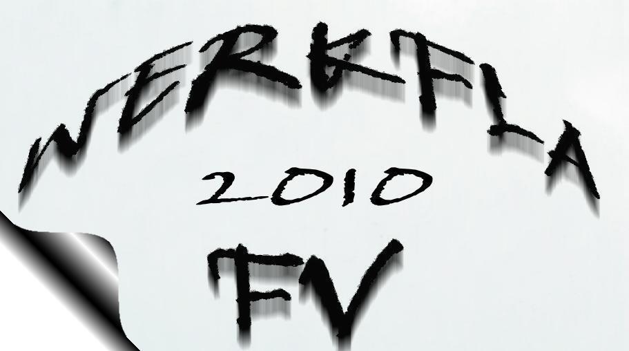 werkfla2010