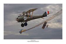 "WWI WW1 AFC RAAF RFC AIRCO DH5 SE5a Albatros Aviation Art Photo Print - 8""X12"""