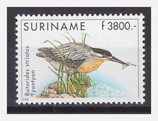 Surinam / Suriname 1998 Reiger heron reiher mangrovereiger MNH