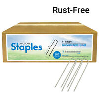 Sandbaggy 200 RUST FREE Landscape Staples~ 6 Inch SOD Garden Stakes Square Pins