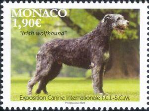 Monaco 2020 Irish Wolfhound/Dogs/Dog Show/Nature/Animals/Pets 1v (mc1218)