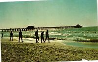 Vintage Postcard - Moonlight on the Gulf Of Mexico Naples Florida FL #1650