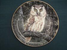 Tengmalm'S Owl collector plate Night Watchman Trevor Boyer Owls Danbury Mint