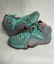 VNDS NIKE LEBRON XII MEN SIZE 12 NSRL SOUTH BEACH 684593-301 (Miami Dolphins)