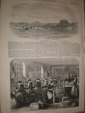 An Islington London Lint factory for army in Crimea 1855 old print