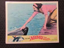 "1966 NAMU, the Killer Whale Original 14x11"" Lobby Card #7 Robert Lansing"
