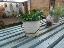 Vintage French Cream Distressed Enamel Bucket / Planter