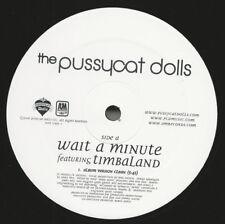 "Pussycat Dolls Wait A Minute 12"" Single! PCDs"