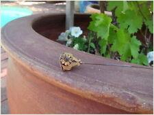 Vintage Antique Art Nouveau Hat Pin Stone Set Flowers Engraved Gold