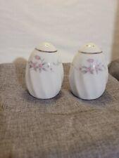 Porcelain salt and pepper shakers